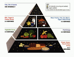 food pyramid for skin issues